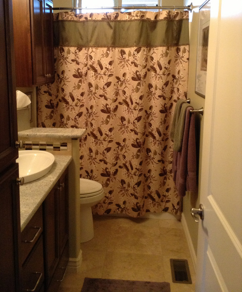 2013-5, Reigh's shower curtain