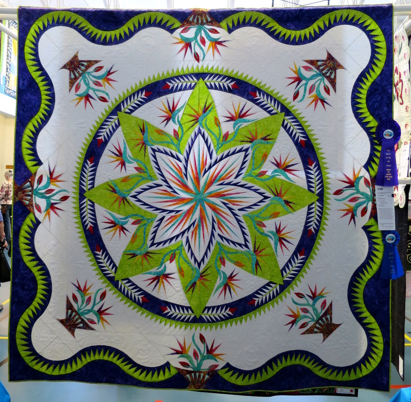 For Kennedy made by Cindy McEntee quilted by Lisa Taylor